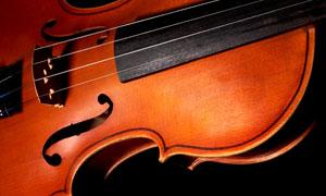 乐器小提琴近景特写摄影高清图片