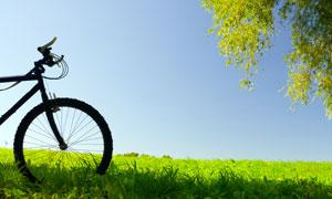 停放在草地上自行车摄影高清图片