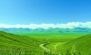 春天新疆风景摄影图片