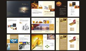高档的金融画册设计矢量素材