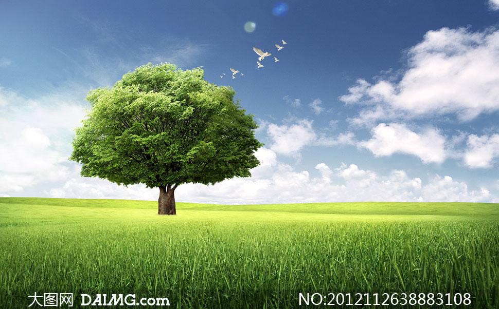 蓝天白云树木与大草原psd分层素材 - 大图网设计素材