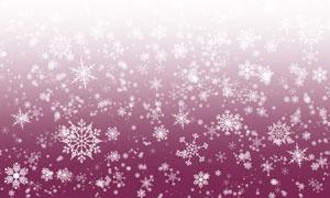 冬季雪花装饰笔刷