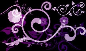 设计花纹花藤装饰笔刷