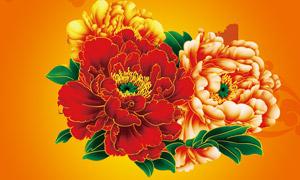 牡丹花设计元素PSD素材
