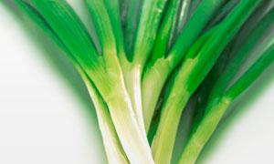 嫩绿的葱静物近景特写摄影高清图片