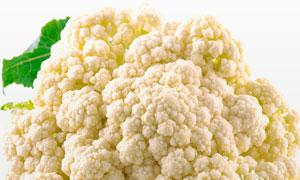 白色的椰花菜近景特写摄影高清图片