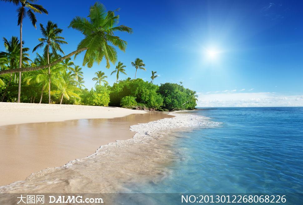 海边大海海水唯美阳光大树热带清澈海岸浅水区浅滩