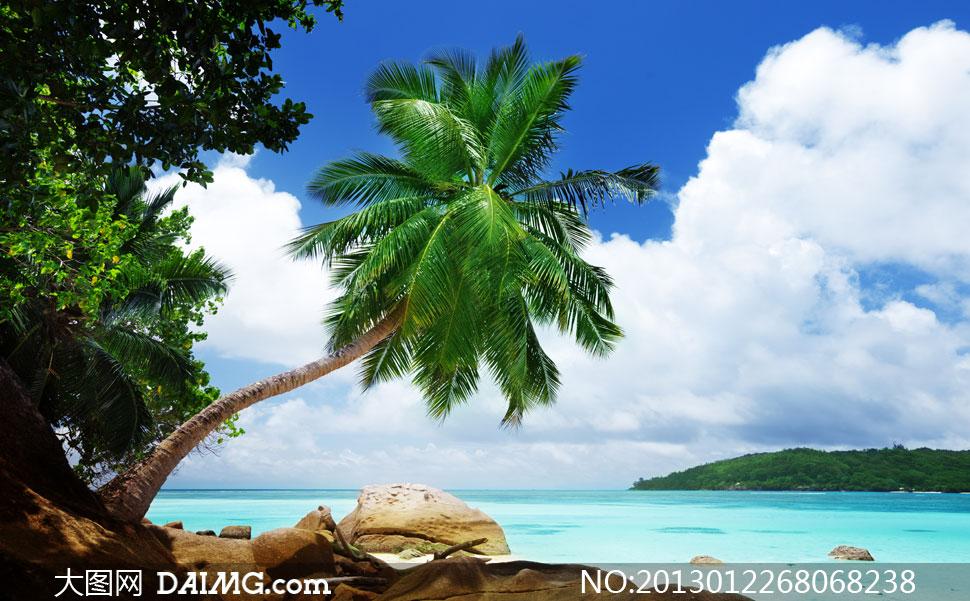 云层云彩多云大海海水石头礁石绿洲岛屿树木椰树热带