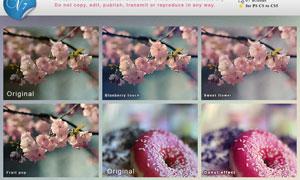 花朵照片甜美效果调色动作
