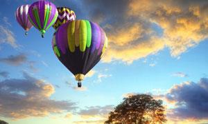 薰衣草与空中的热气球摄影高清图片