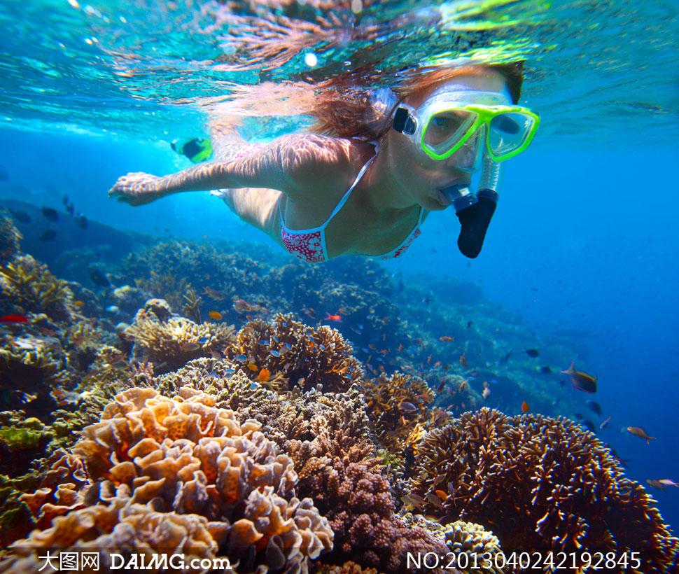 壁纸 海底 海底世界 海洋馆 水族馆 桌面 970_820