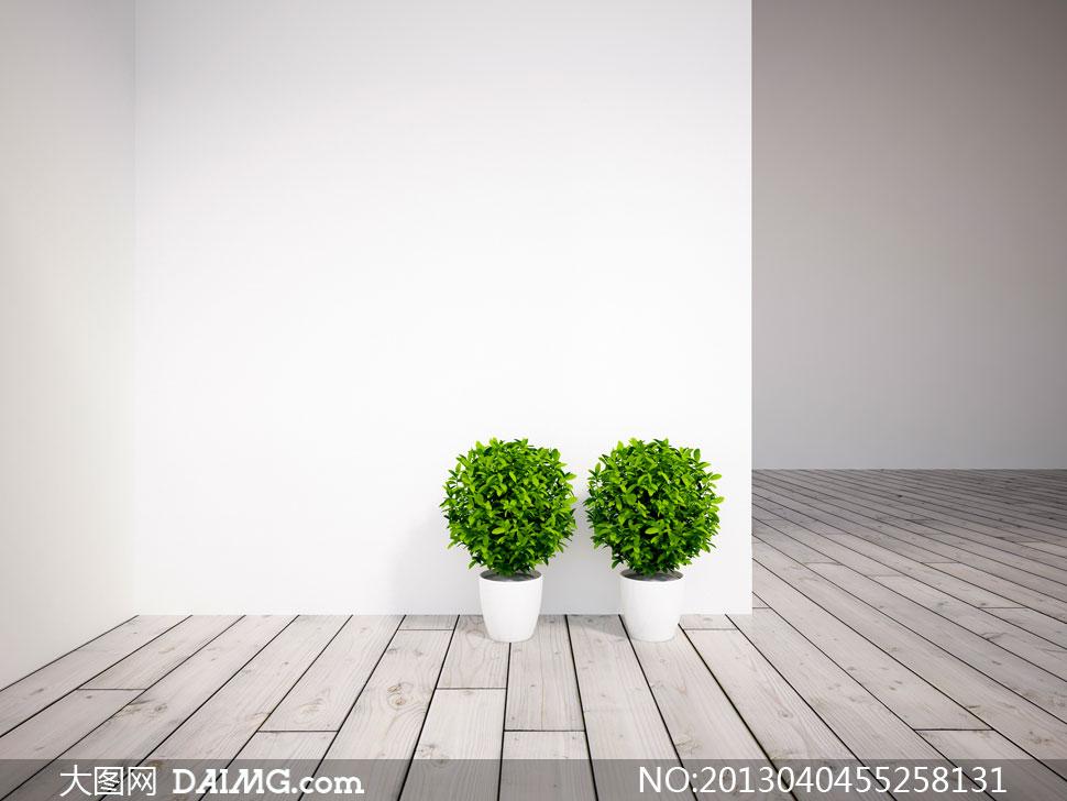 图家居效果图装修家具陈设摆设陈列木地板植物盆景盆栽白墙白色绿色