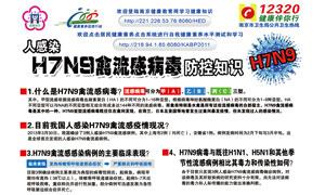 H7N9禽流感防控知识宣传海报PSD源文