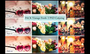 靜物照片鮮艷色彩效果PSD調色圖層
