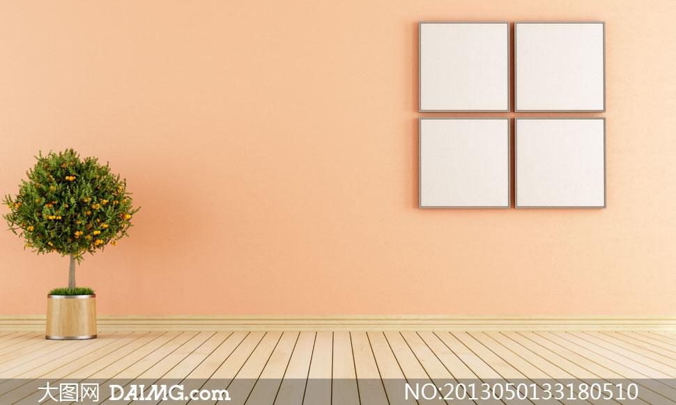 室内植物与墙上的画框摄影高清图片