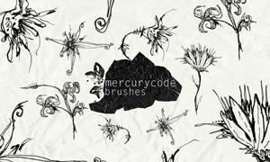 手绘花朵花枝笔刷
