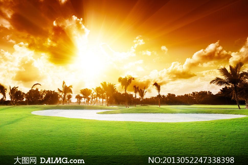 关键词: 高清摄影大图图片素材自然风景风光日落黄昏傍晚太阳夕阳树叶
