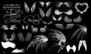 超美的水花翅膀和天使翅膀笔刷