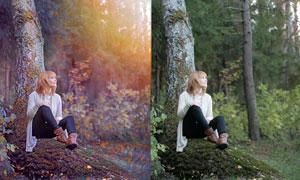 森林下美女唯美紫色效果PSD调色图层