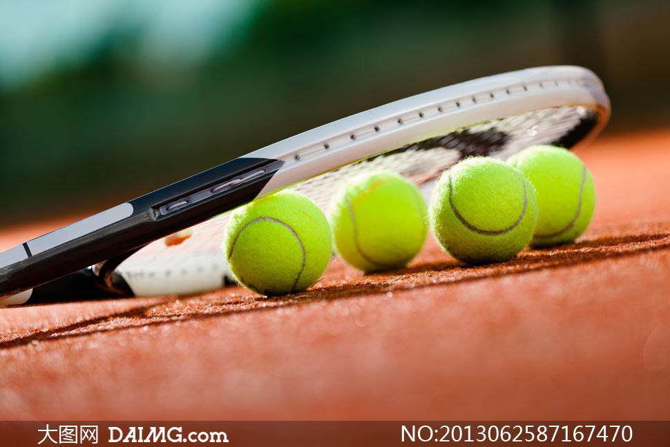 网球摄影_网球摄影图片素材编号20140808104331体