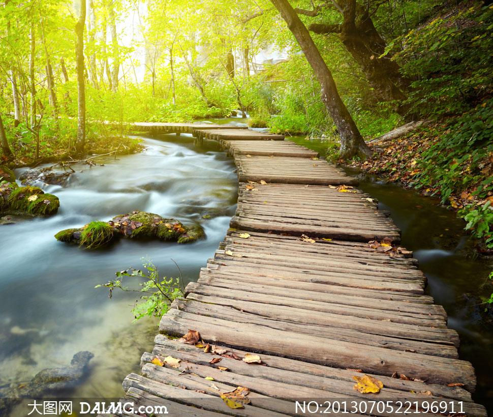 树林里的流水栈道风光摄影高清图片
