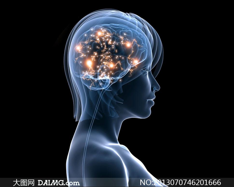 科幻气息美女人体透视效果高清图片