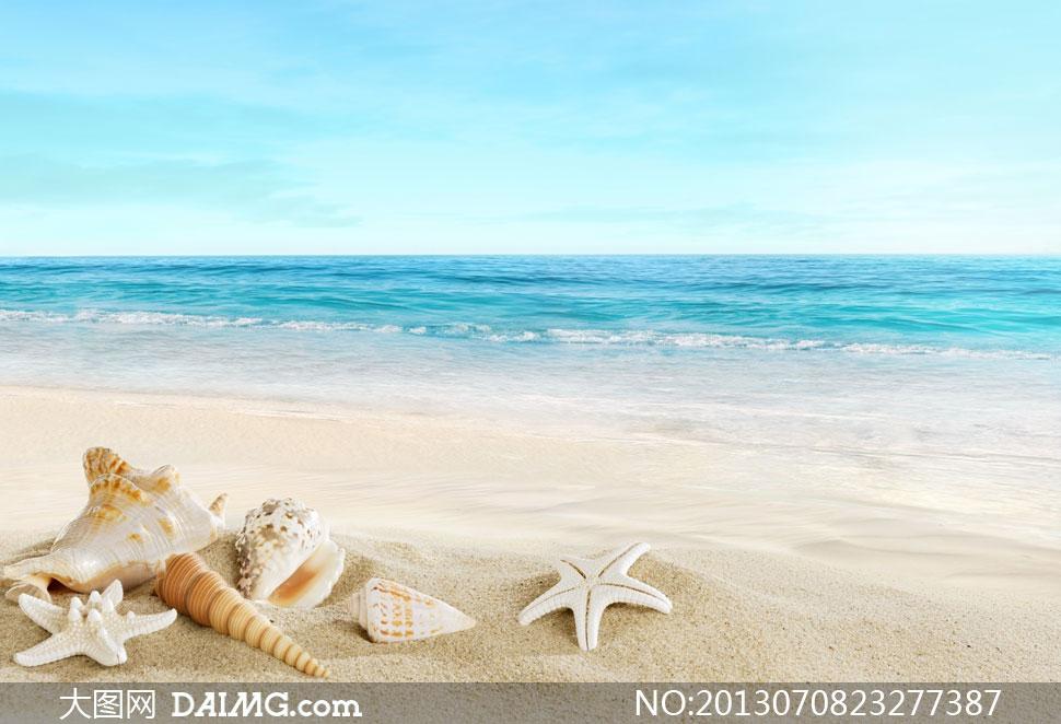 图片素材自然风景风光天空沙滩海滩大海海水海景海面海边海浪贝壳海星