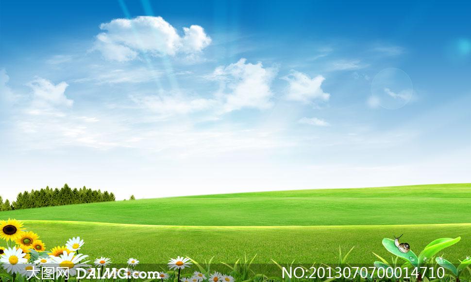 关键词: 蓝天白云云彩云朵阳光光线绿色草地草皮草坪树林树木花草幼苗