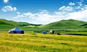蓝天白云下的绿色草原PSD源文件