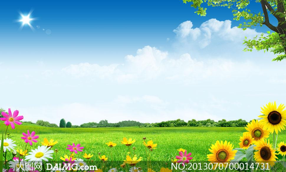 春季阳光下的绿色花草psd分层素材图片