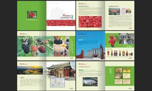 封丘树莓农业画册模板矢量素材