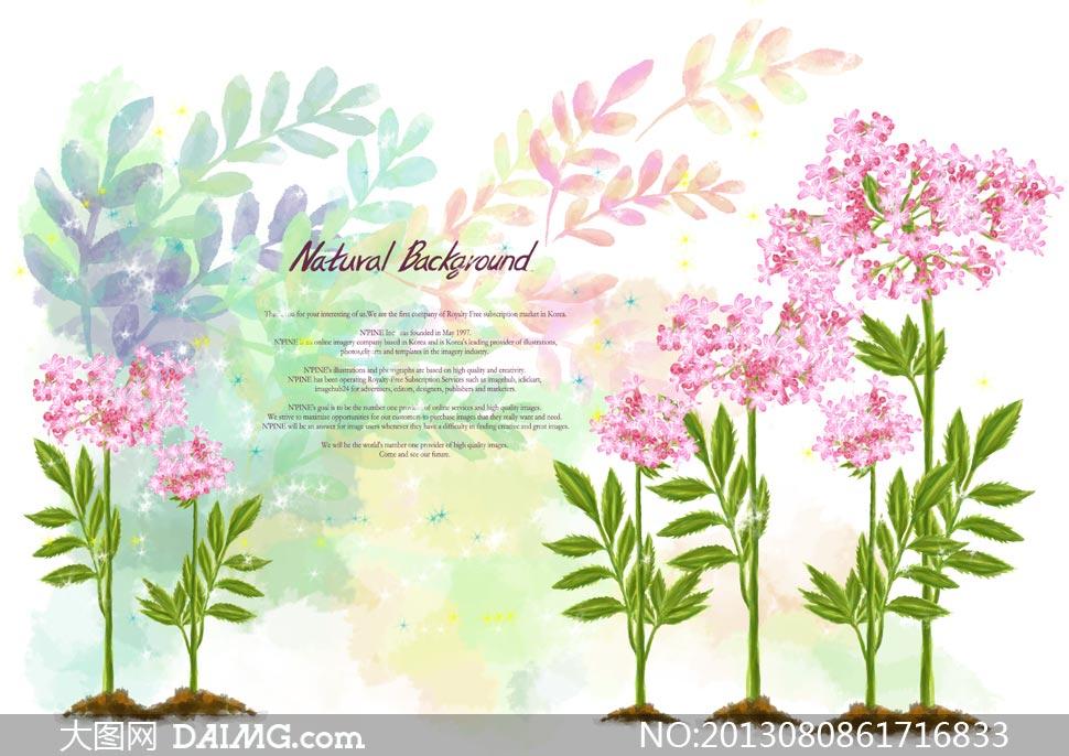 手绘水彩树叶花卉植物psd分层素材