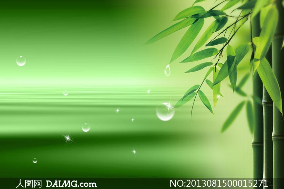 关键词: 绿色清新背景气泡泡泡星光竹叶竹子竹叶绿叶树叶大树环保水