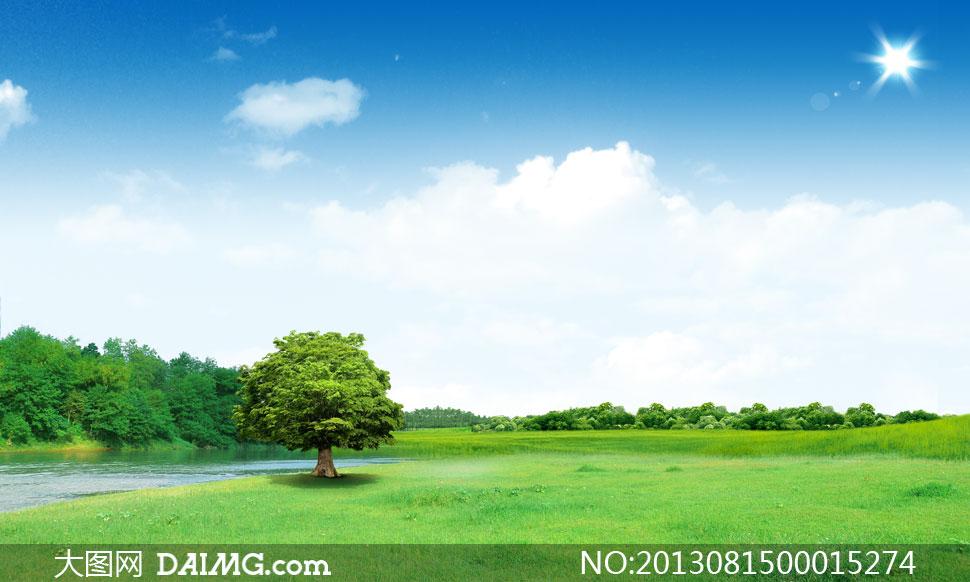蓝天白云下的绿色大树psd分层素材