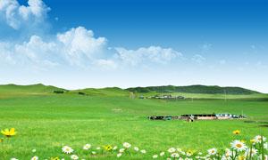 蓝天下的内蒙古大草原PSD分层素材