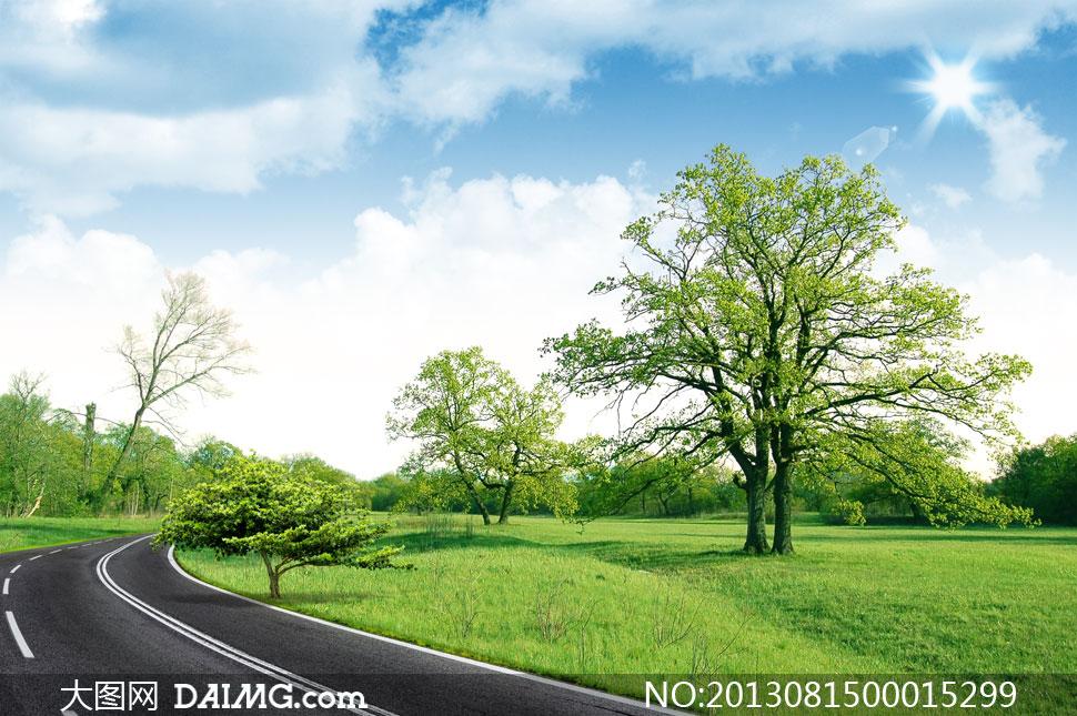 绿色草地和公园大树PSD分层素材