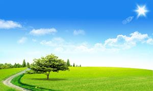 阳光下的绿色田园风光PSD分层素材