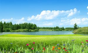 蓝天白云下草地和湖泊PSD分层素材