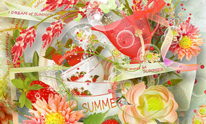 花朵草莓边框与碗等实物图片素材