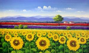 夏日向日葵园地水彩绘画图片素材