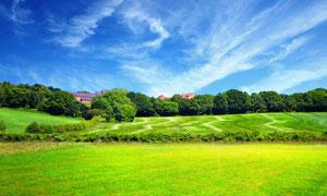 蓝天白云霞的绿色草原摄影图片