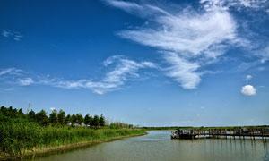 崇明湿地公园摄影图片素材