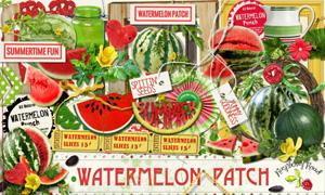 标签喷溅西瓜花朵等欧美剪贴素材