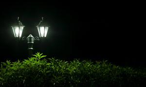 夜晚亮着光的欧式路灯摄影高清图片