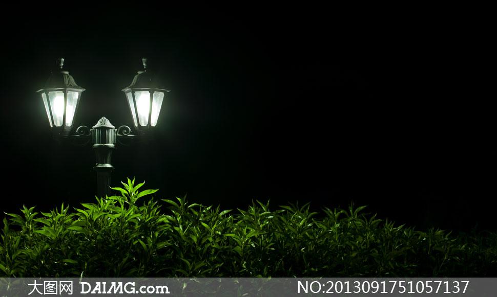 大图首页 高清图片 自然风景 > 素材信息          夜晚星空月亮大树