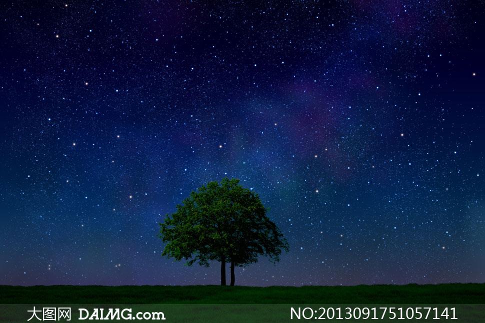 天空繁星点点与大树草地等高清图片