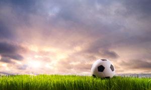 停在草地上的足球近景摄影高清图片