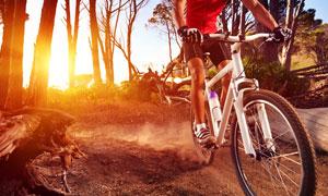 在骑车穿越树林的车手摄影高清图片