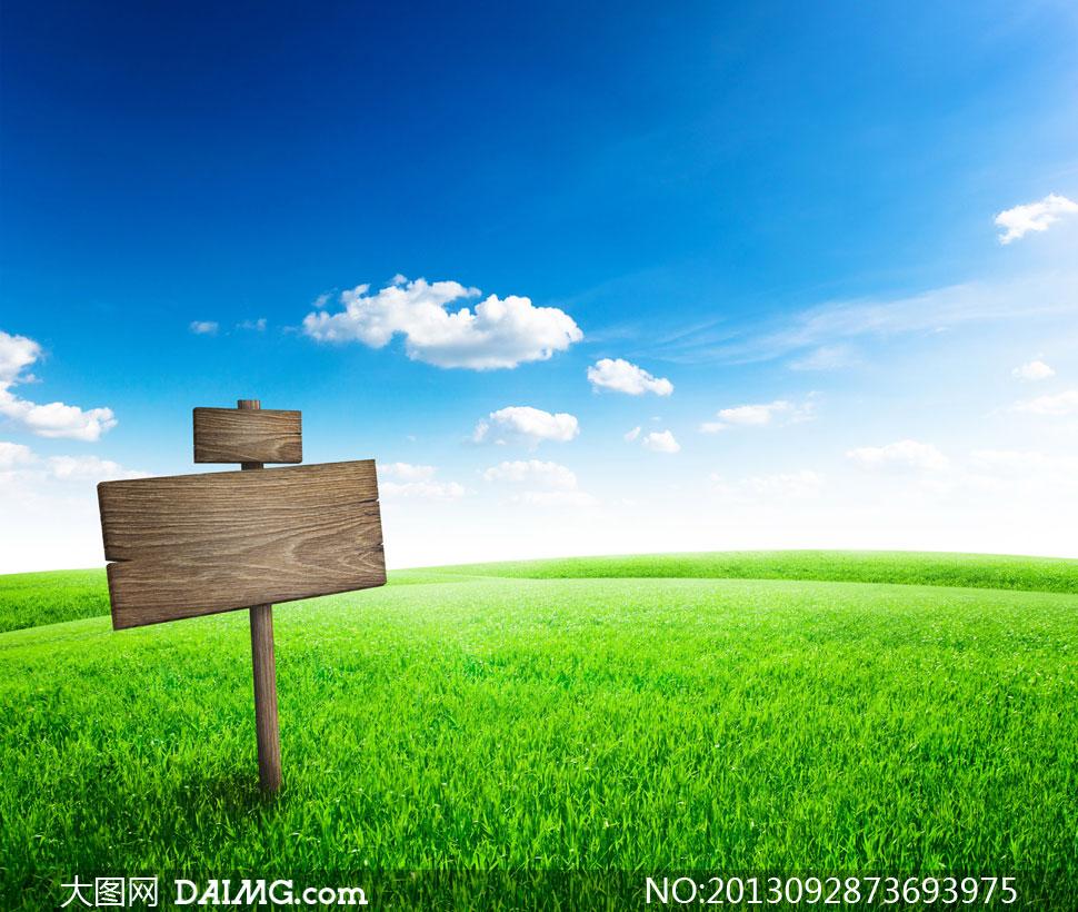 蓝天白云草地与小木牌摄影高清图片 - 大图网设计素材