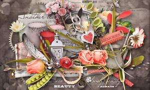 玫瑰花与树叶羽毛等欧美剪贴素材